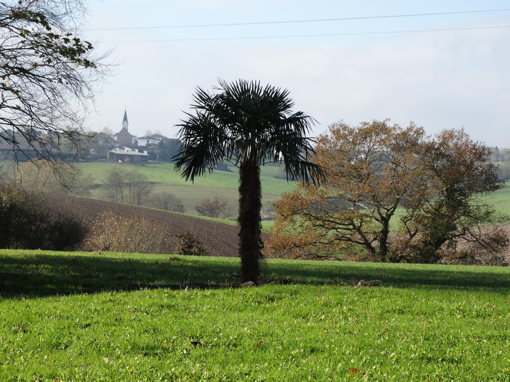 Vue de la pelouse vers le village d'Orègue
