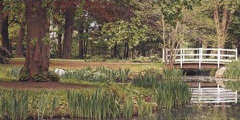 Schenefelds grüne Lunge: Der Hohenzollernpark.