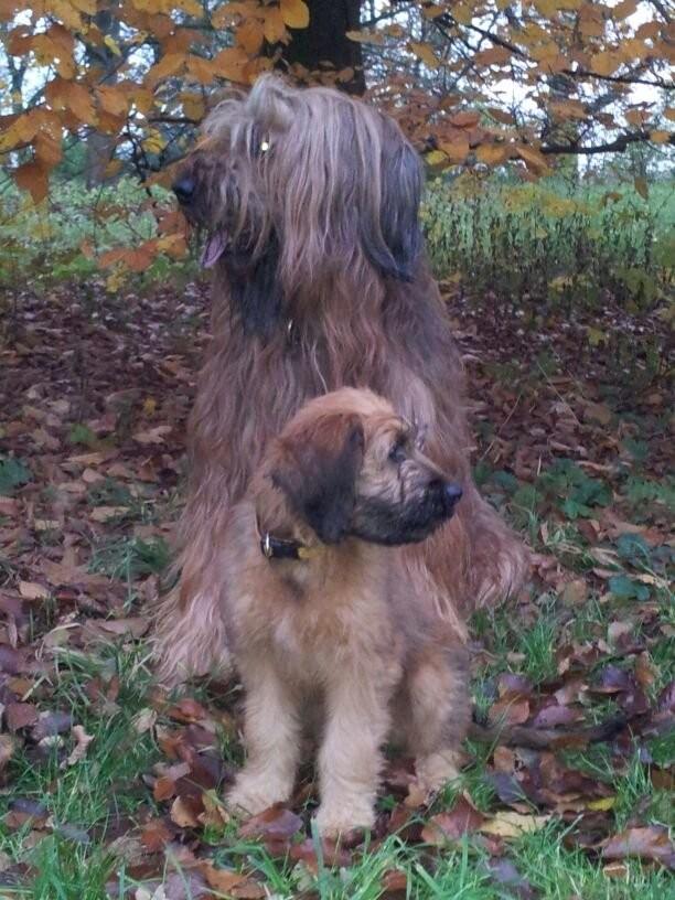 Blanca und Athos November 2012