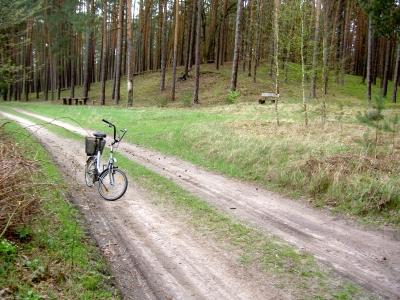 Dieser Wanderweg führt vom Groß Schönebecker Damm (nah Honeckers Jagdhaus) zum Forsthaus Hirschberg.