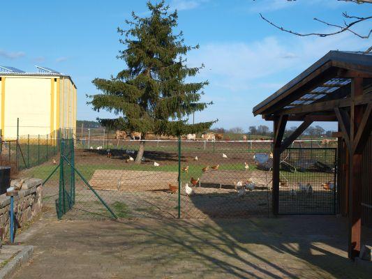 In Buckow sieht man so einiges, was mit Landwirtschaft zusammen hängt.