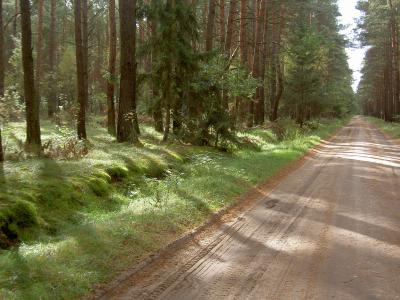 Rad- und Wanderweg zwischen Bebersee und Groß Väter (Strecke ist auch für PKWs frei)