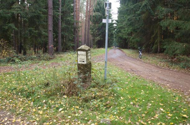 Kreuzungspunkt von Radwegen bei Rosenbeck. Die Asphaltstraße führt bis nach Groß Schönebeck, viele km durch herrlichen Wald!