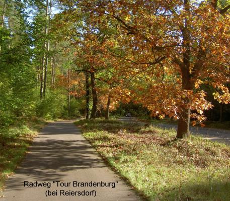 """Radweg-Strecke der """"Tour Brandenburg"""" kurz hinter Reiersdorf"""