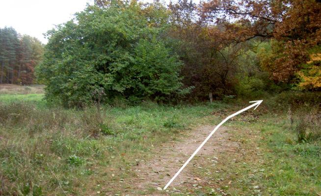 Grasweg am Ende des Großdöllner Sees. - Wer den See umrunden will, muss hier lang!