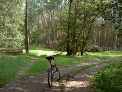 Wichtiger Kreuzungspunkt auf dem Weg zu den Pinnowseen, nah Honeckers Jagdhaus. - Die kleine Lichtung hat dreieckige Form. Abzweig zu den Pinnowseen ist auch erkennbar am Schild mit der Eule (Naturschutzgebiet).