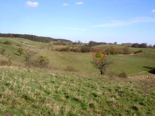 Freier Blick vom Rand einer relativ hohen Hügelkette.