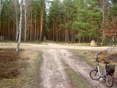 """Einsame Waldkreuzung - Die """"Spinne"""". - Von hier zweigen strahlen 7 Wegrichtungen aus. - Hauptweg ist der kopfsteinige Kreuzdamm (ab """"Spring"""")"""