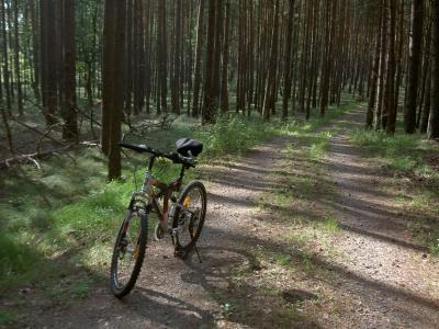 Fester Schotterweg oberhalb von Gut Sarnow.
