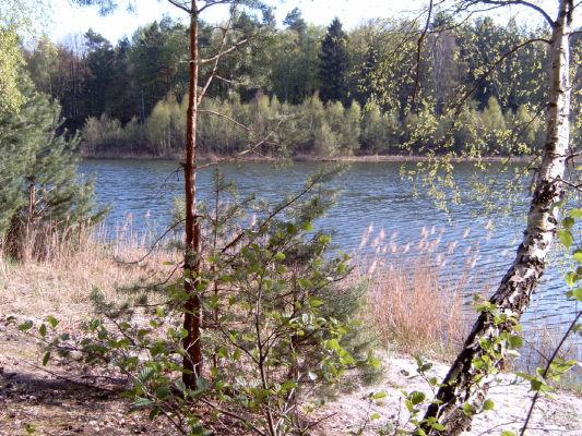 """Krummer Köllnsee an der """"Badestelle"""". - Im strengen Naturschutzgebiet soll man nicht baden, aber eine schöne Rast ist möglich!"""