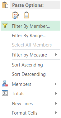 Filter by Member via Context Menu