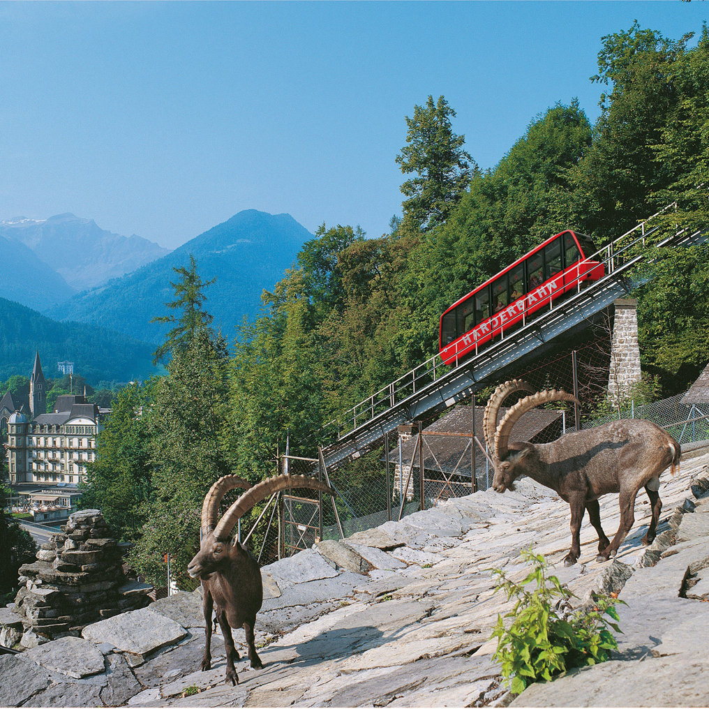 Interlaken - Harder funicular railway