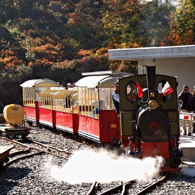 Vertic Alp - Panoramic Steam Train