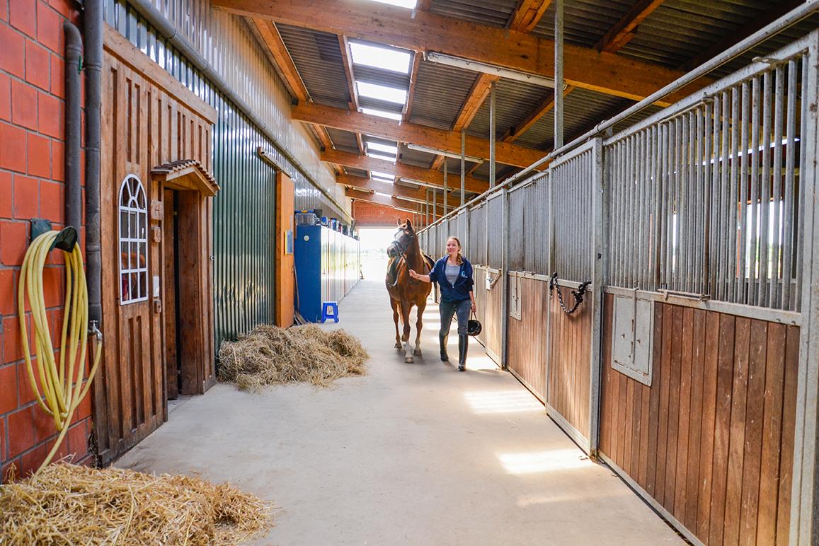 Die lange Stallgasse mit Zugang zur Halle, zum Reiterstübchen und zum Außenreitplatz