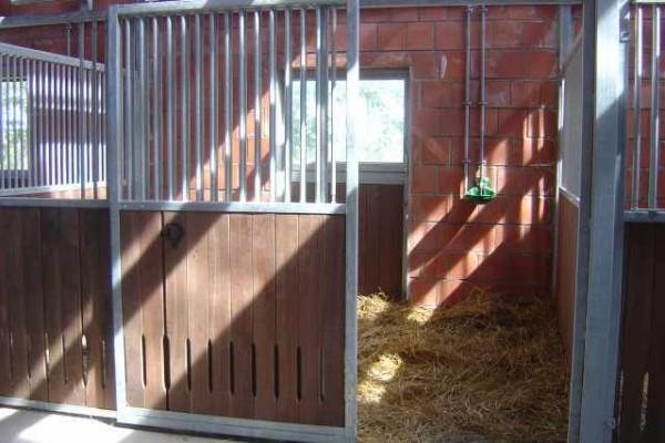 Pferdebox von innen mit geteilter Außentür