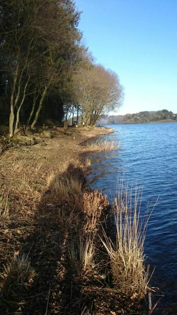 AMENAGEMENT DES ABORDS DU LAC DE GLOMEL