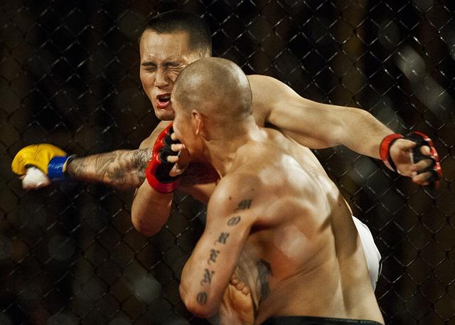 Zwei MMA-Kämpfer kämpfen im Ring. Der Kämpfer mit den gelben Handschuhen schlägt den Kämpfer mit den roten Handschuhen.