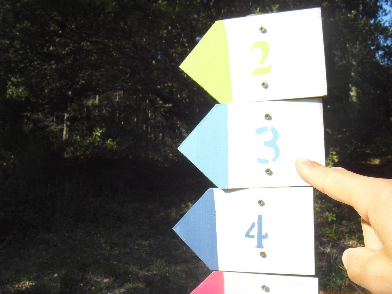 21-Pour Stef, place à la 3'