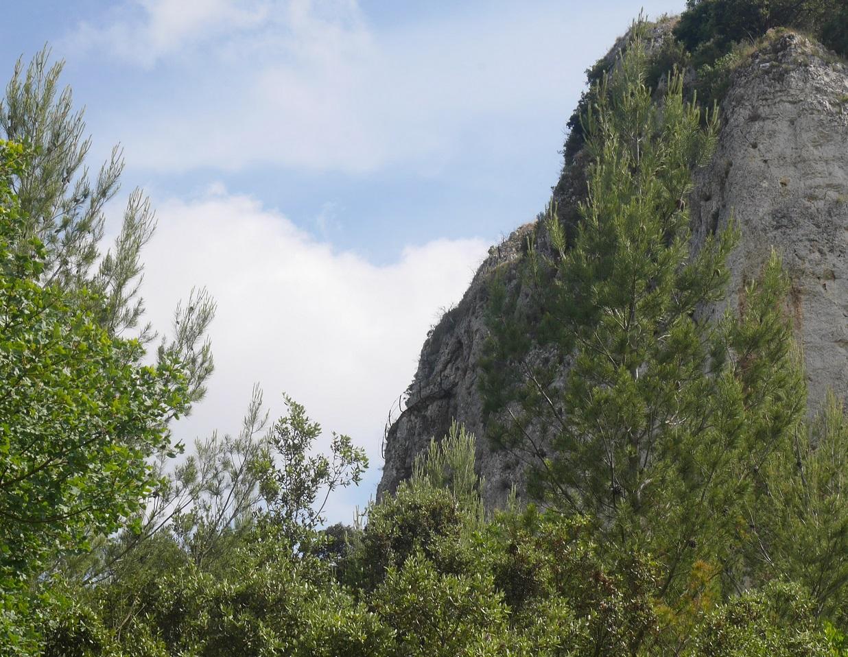 74-Vue sur la grotte aux Allemands