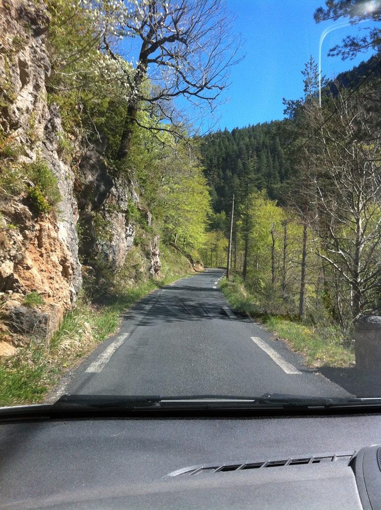 19-Beaucoup de route (et de courage) pour Mlle Tortue aussi pour assurer une assistance au top (11h28)