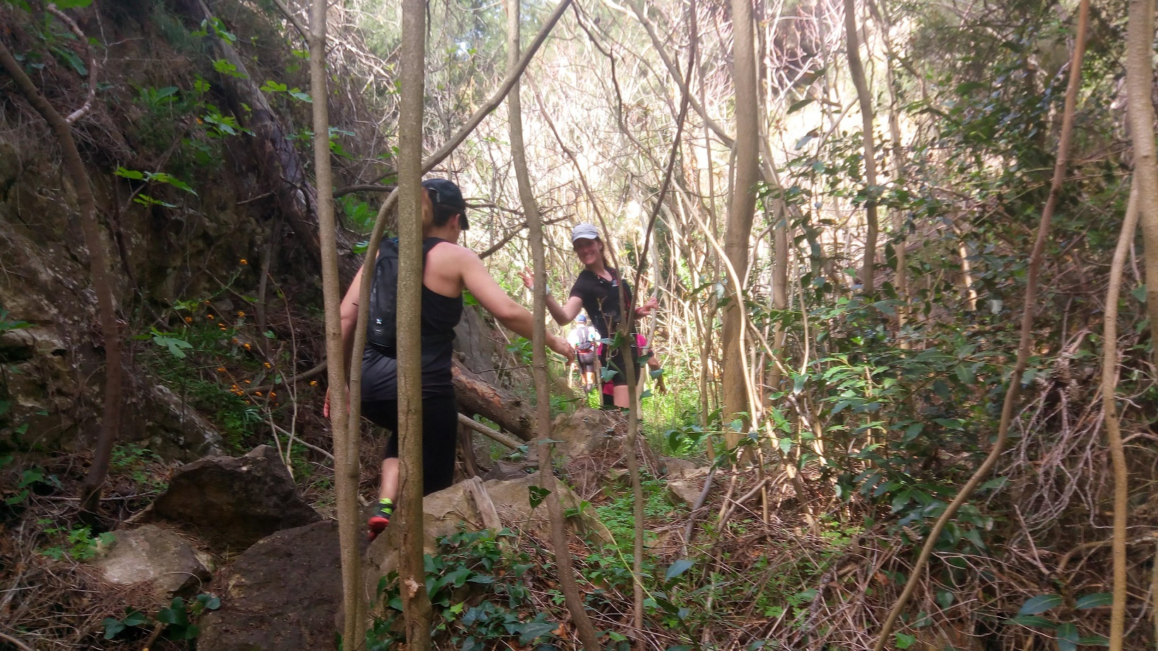 12-Avant de découvrir la mer, un peu de jungle..