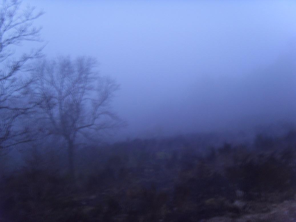 39-Pluie, froid et brouillard au petit matin.. on se 'régale'.. (6h41)