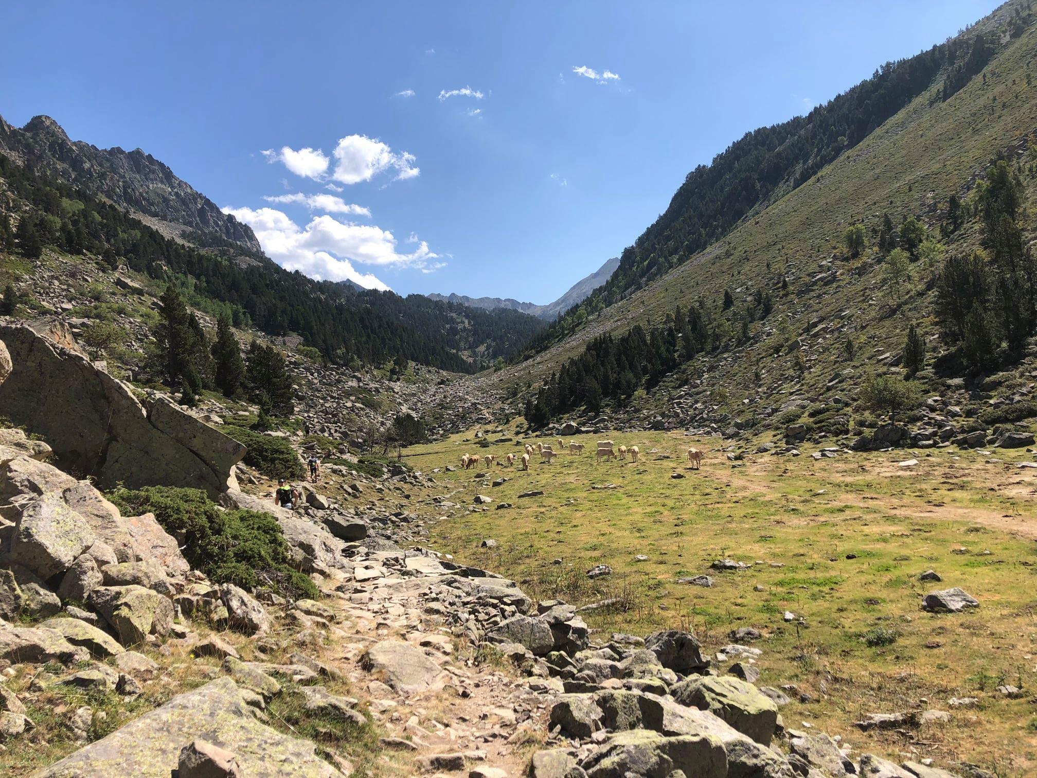 23-Montée vers cabane d'Aygues Cluse (100km)
