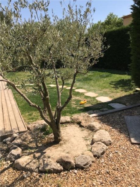 6-On longe la maison sur la largeur pour tourner à gauche à l'olivier
