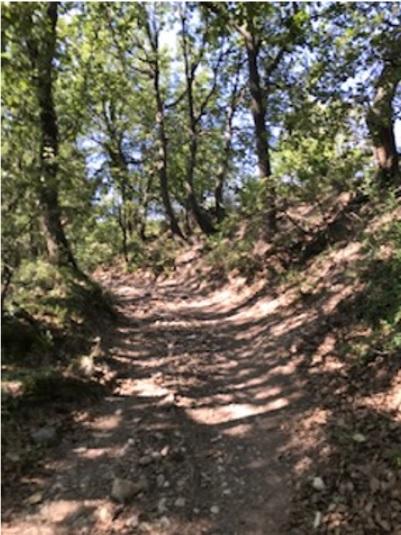 1-Et c'est parti. Ici c'est la Roque d'Anthéron, donc ça grimpe direct!