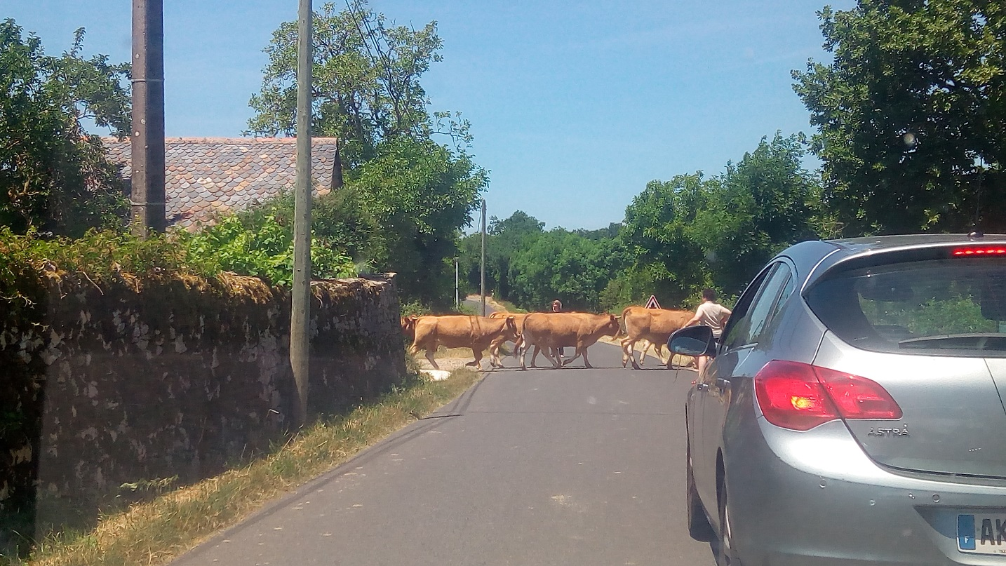 3-Aah le Cantal