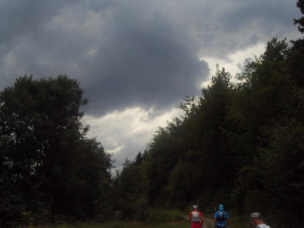 38-Les 2 Taureaux, eux, voient l'orage arriver.. (18août 17h)