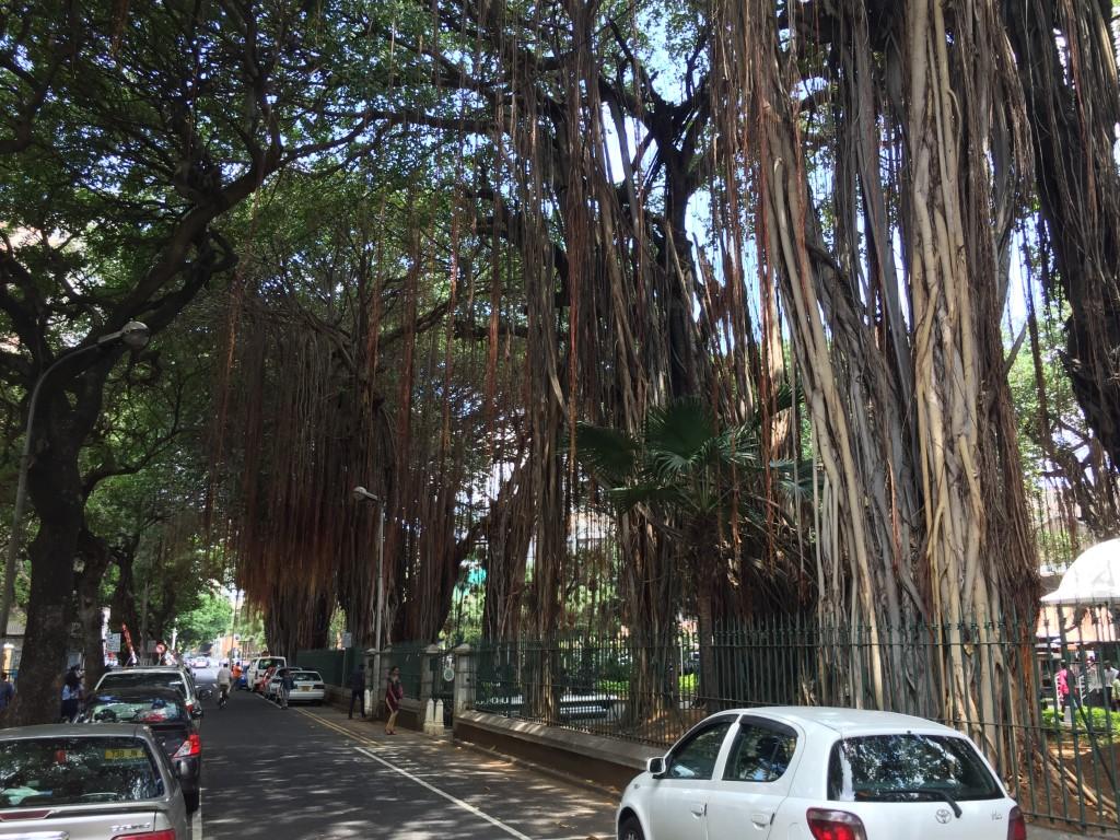 Port Luis: Bissoondoyal Street, das Zentrum