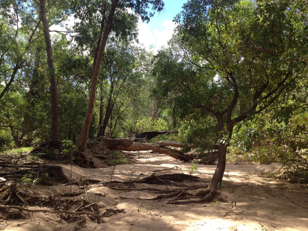 Australien, Northern Territory, Kakadu National Park, Gunlom Falls, Yurmikmik Walks, Bullabong