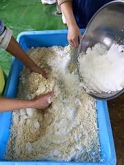 米麹と塩をまぜます