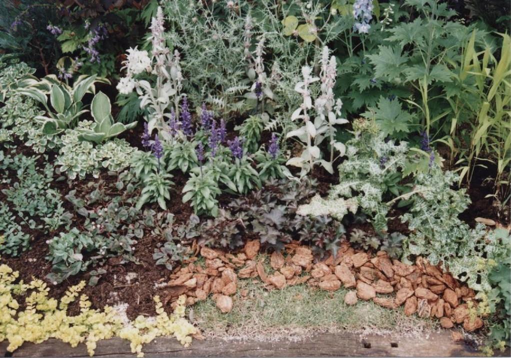 花フェスタ記念公園 1998年