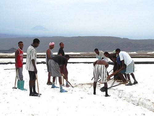 ダナキル砂漠:塩の採集