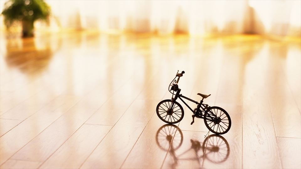 世界一小さい自転車