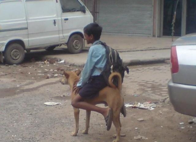 インドの不思議な光景