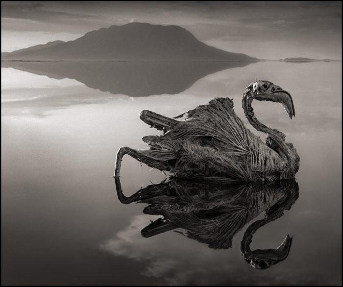 ナトロン湖