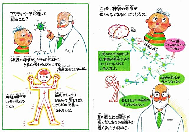 アクティベータネットワークジャパン