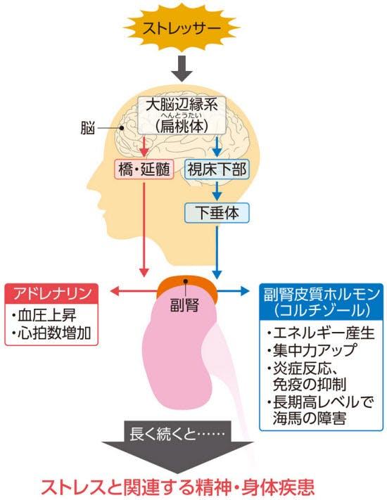 日経電子版より抜粋