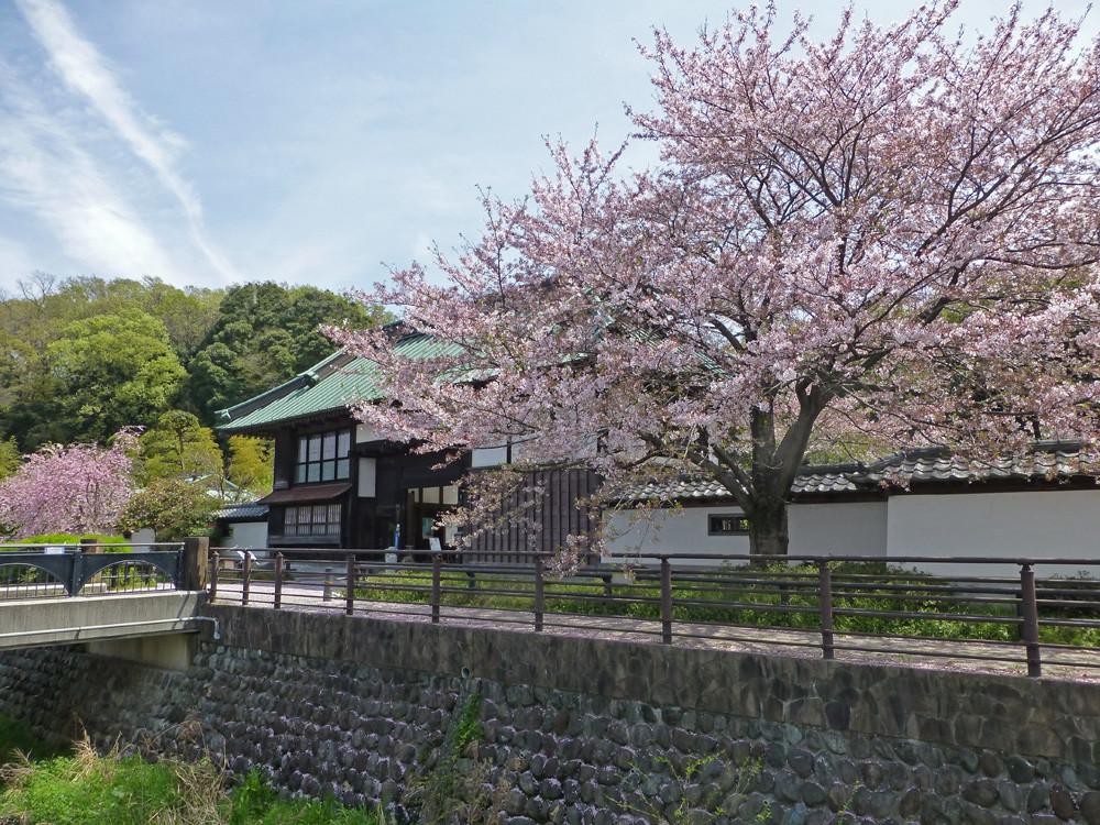 中丸長屋門(4月6日撮影)