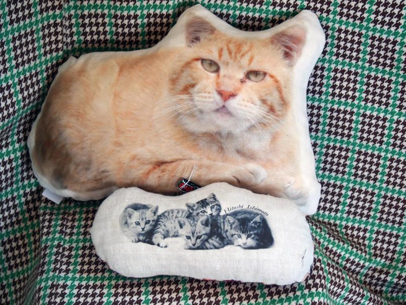 フォトぐるみ:本当にそこに猫がいるような存在感です。