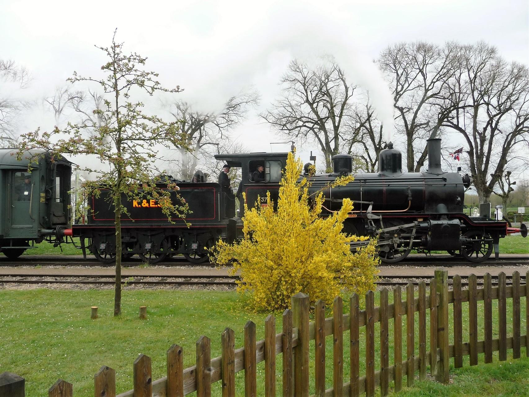 """La NSB 376 """"Norwegian"""" du Kent & East Sussex Rialway - Saint-Valéry sur Somme"""