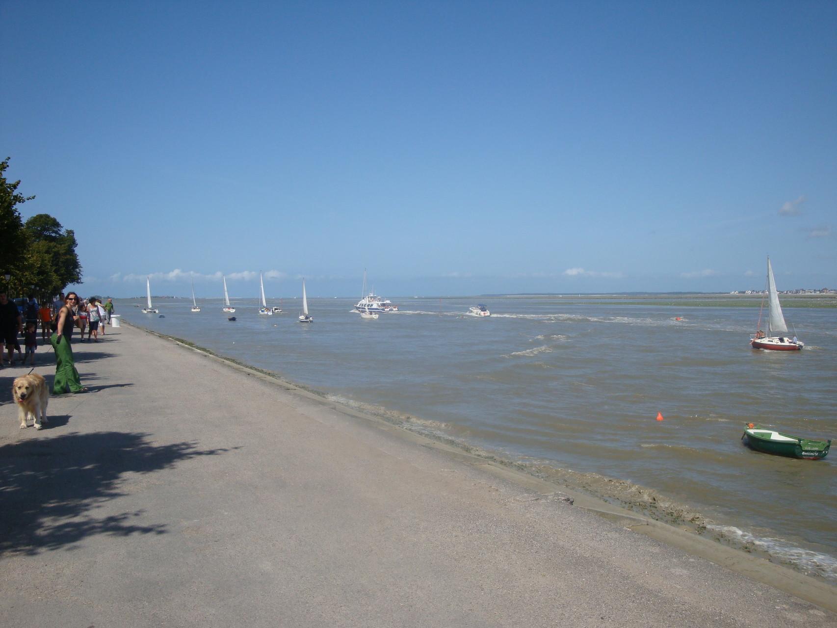 Sortie de voiliers - Baie de Somme