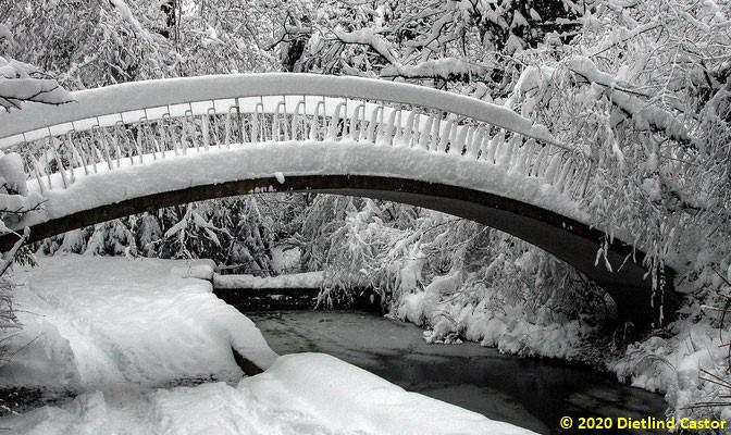 Brücke im Lindenhofpark © 2020 Dietlind Castor
