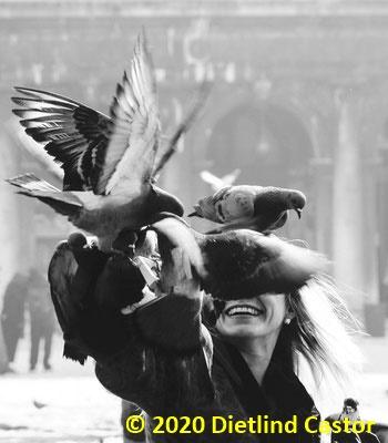 Venedig  Markusplatz © 2020 Dietlind Castor