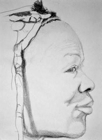 Portrait crayon HB-H