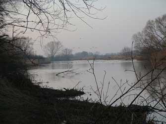 """Kirchweyher See (Borgsee"""")"""