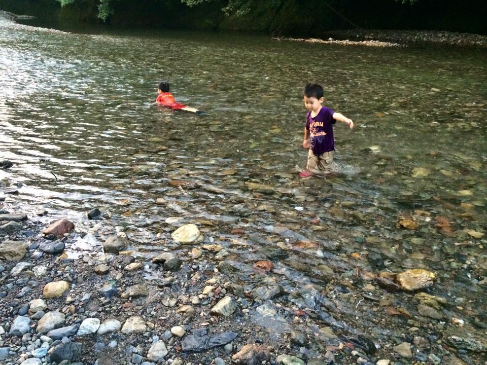 高麗川。さまざまな生き物に魅了され、毎日行っても、なかなか帰れません。